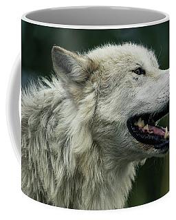 Winded Coffee Mug