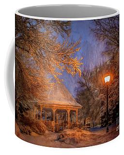 Windom Park Snowstorm Coffee Mug