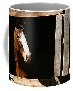 Coffee Mug featuring the photograph Window by Angela Rath