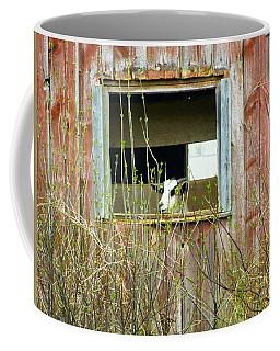 Windows App Coffee Mug