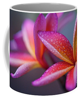 Coffee Mug featuring the photograph Windows Into Nature by Sharon Mau