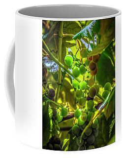 Wine On The Vine Coffee Mug