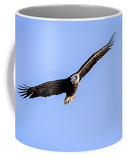 Coffee Mug featuring the photograph Wing Span by Ray Congrove