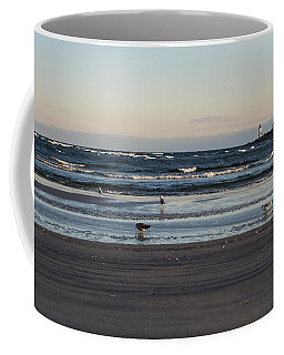 Wingaersheek Beach Seagulls At Sunrise Coffee Mug