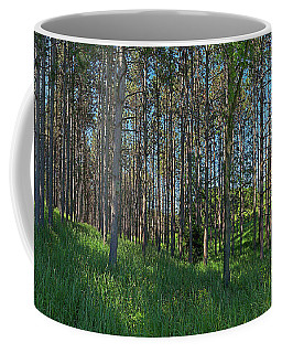 Wingate Prairie Veteran Acres Park Pines Crystal Lake Il Coffee Mug