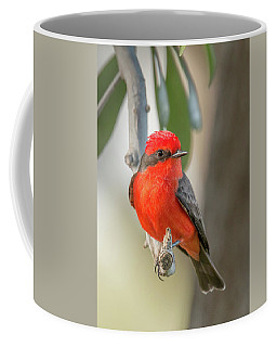 Winged Zorro Coffee Mug