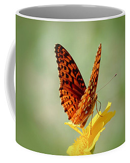 Wings Up - Butterfly Coffee Mug by MTBobbins Photography