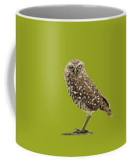 Winking Owl Coffee Mug