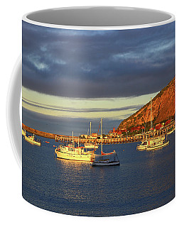 Coffee Mug featuring the photograph Winter Afternoon Sun At Friendly Bay by Nareeta Martin