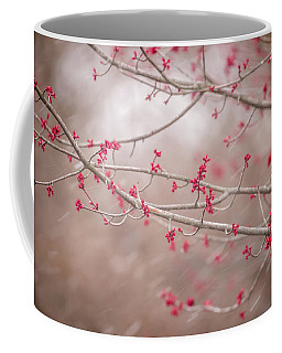 Coffee Mug featuring the photograph Winter And Spring by Terry DeLuco