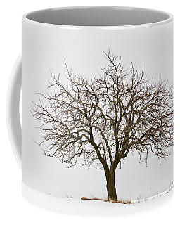 Winter Apple Tree Coffee Mug