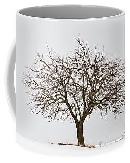Winter Apple Tree Coffee Mug