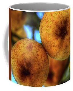 Winter Apples 2 Coffee Mug