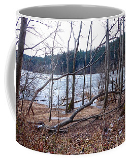 Coffee Mug featuring the photograph Winter At Padden by Karen Molenaar Terrell