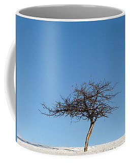 Winter At The Crabapple Tree Coffee Mug