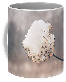 Coffee Mug featuring the photograph Winter Beauty by Viviana  Nadowski