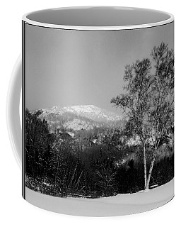 Winter Birch Before Rattlesnake Mountain Coffee Mug