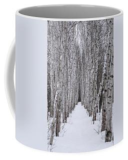 Winter Birch Path Coffee Mug