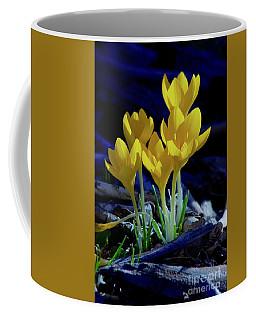 Winter Bloom Coffee Mug