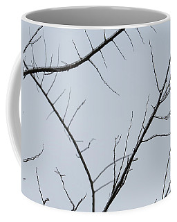 Winter Branches Coffee Mug by Craig Walters
