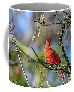 Winter Cardinal Coffee Mug