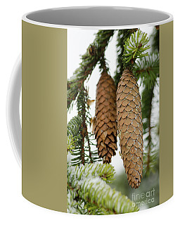 Coffee Mug featuring the photograph Winter Cones by Nick Boren