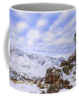 Winter Desert Coffee Mug
