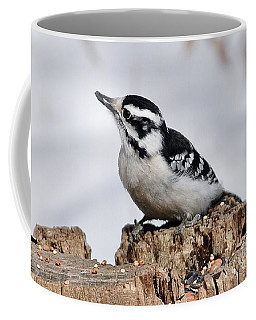 Winter Downy Woodpecker Coffee Mug