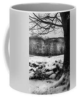 Coffee Mug featuring the photograph Winter Dreary by Bill Wakeley