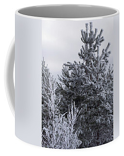 Winter Frost On The Trees Coffee Mug