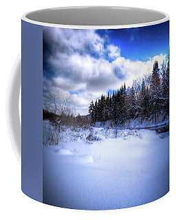 Coffee Mug featuring the photograph Winter Highlights by David Patterson