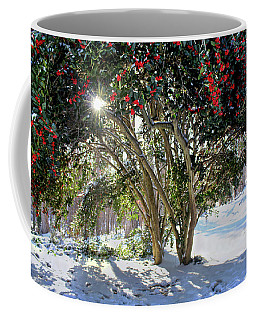 Coffee Mug featuring the photograph Winter Holly by Jessica Brawley
