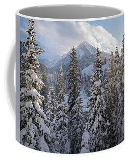 Coffee Mug featuring the photograph Winter In The Wasatch by James Udall