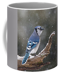 Coffee Mug featuring the photograph Winter Jay by Mircea Costina Photography