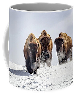 Coffee Mug featuring the photograph Winter Journey by Jack Bell