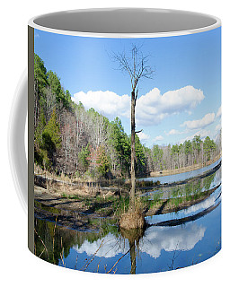 Coffee Mug featuring the photograph Winter Lake View by George Randy Bass