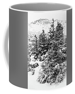 Winter Night Forest M Coffee Mug