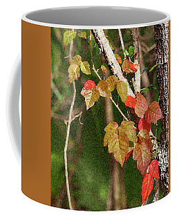 Winter On Gillot Blvd. Pt. Charlotte,fl Coffee Mug