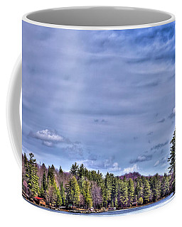 Coffee Mug featuring the photograph Winter On The Pond by David Patterson