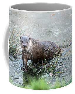Winter Otter Coffee Mug