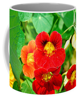 Winter Park Nasturtium 2 Coffee Mug