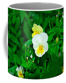 Winter Park Violets 1 Coffee Mug