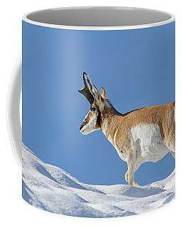 Winter Pronghorn Buck Coffee Mug