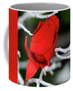 Winter Rose Coffee Mug by Cindy Manero