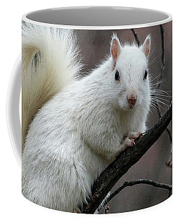 Coffee Mug featuring the photograph Winter Squirrel by William Selander