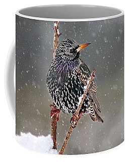 Winter Starling 2 Coffee Mug