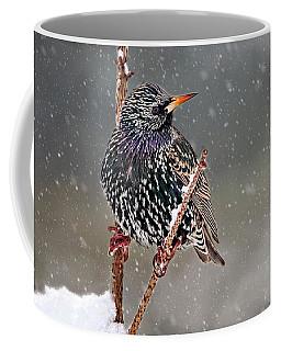 Winter Starling 2 Coffee Mug