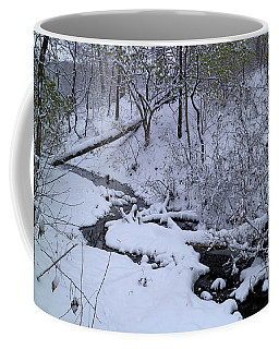 Coffee Mug featuring the photograph Winter Stream Bed by Scott Kingery
