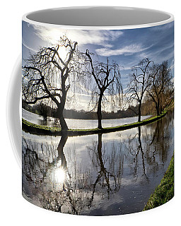 Coffee Mug featuring the photograph Winter Sun by Shirley Mitchell