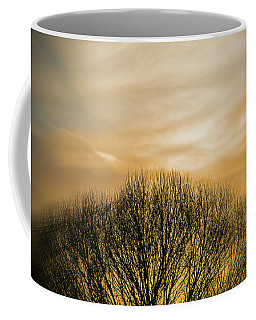 Winter Sunset Coffee Mug by Charles Ables